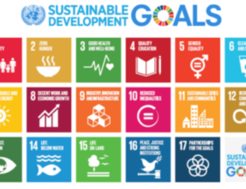 Black Fox Philanthropy SDG White Paper Release | From Promise to Practice: Boots-on-the-Ground Perspectives on the UN Sustainable Development Goals